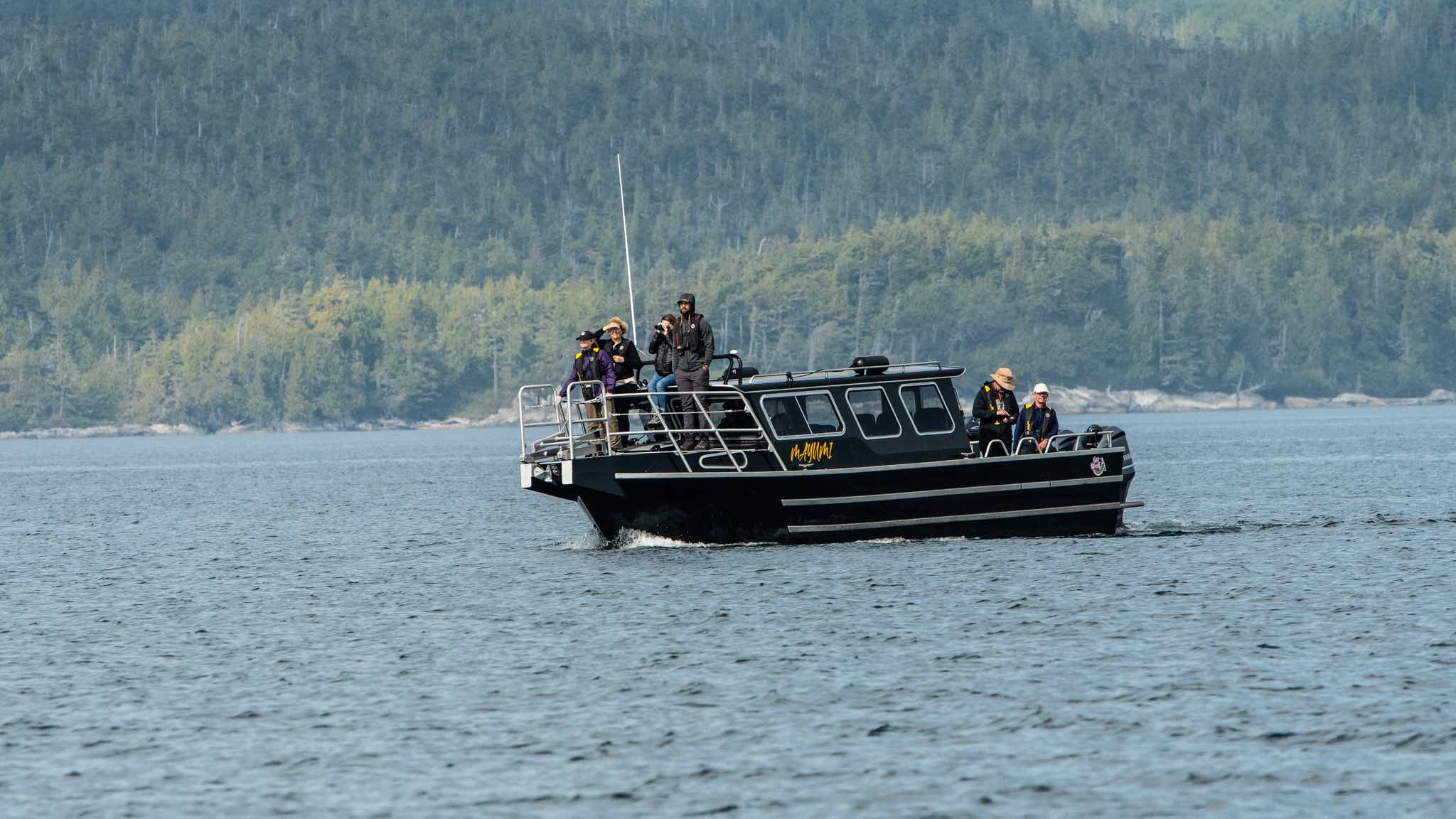 Covered Grizzly Bear Viewing Tour Boat